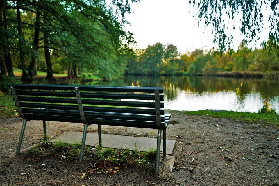 Seat, Bank, Case, Autumn, Nature, Lake