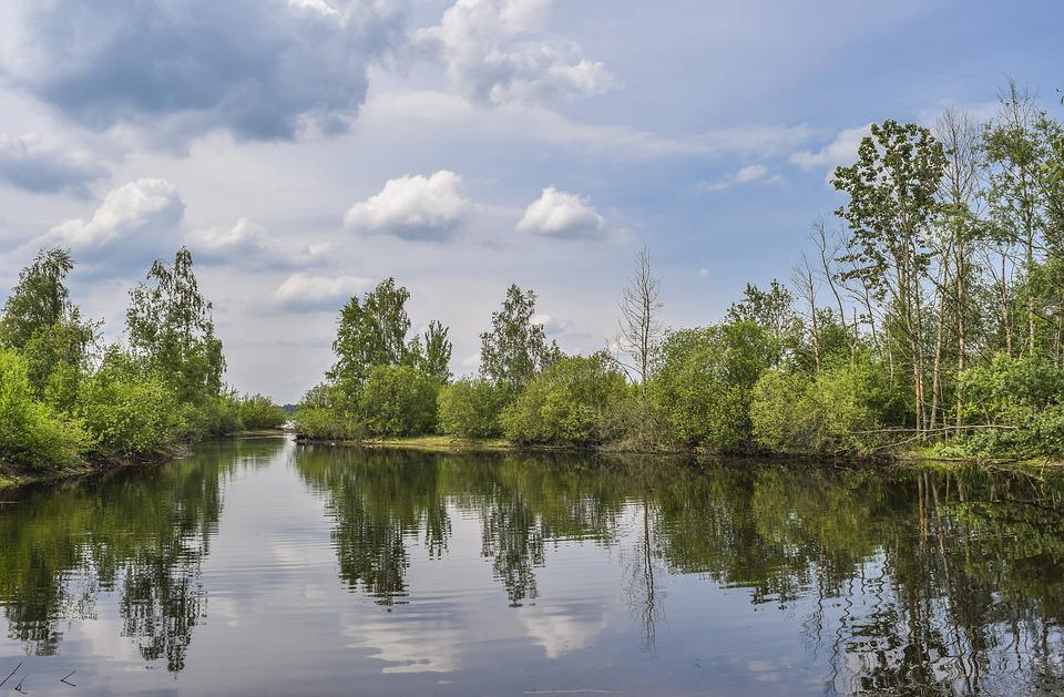 Nature, Lake, Water, Landscape, Waters, Summer