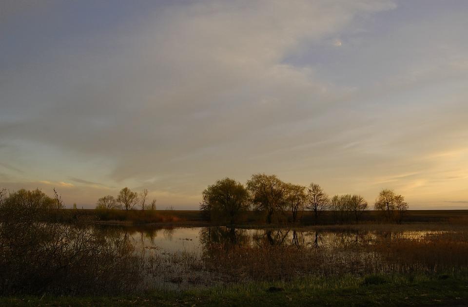 Lake, Swamp, Spring, After Sunset, Nature, Ukraine