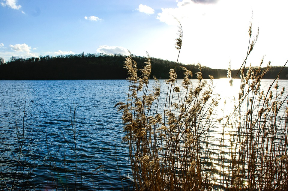Lake, Nature, Landscape, Water, Waters, Island, Blue