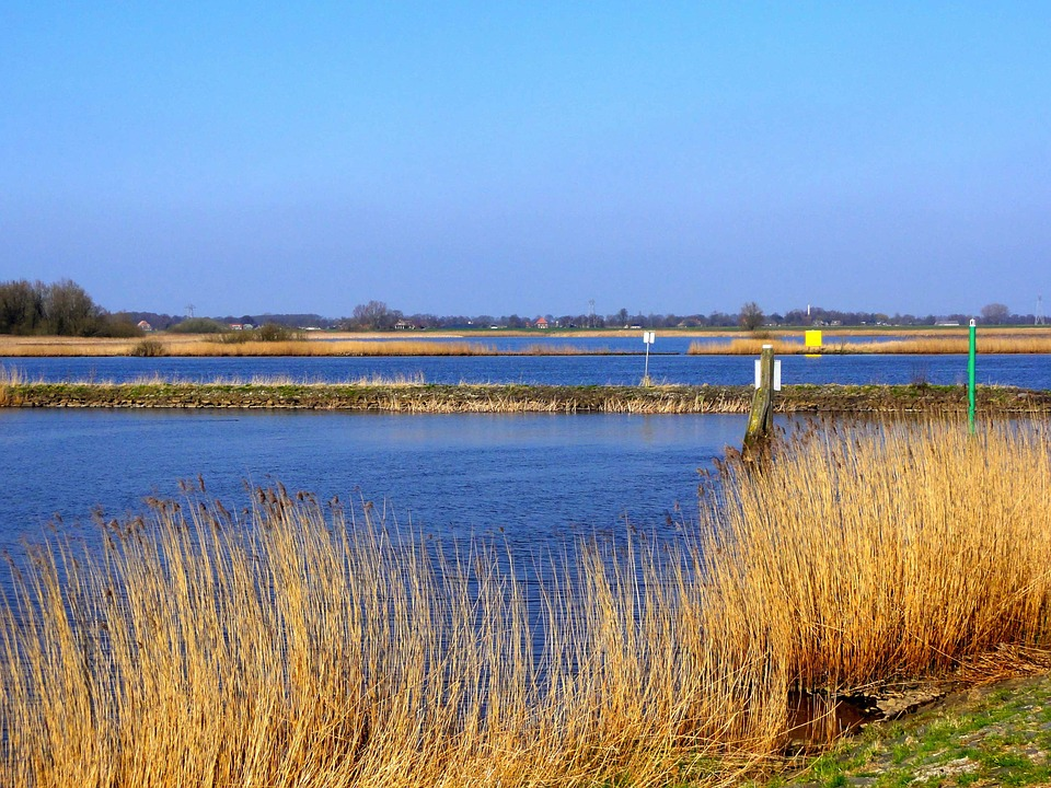 Netherlands, Scenic, Sky, Clouds, Wetland, Lake, Water