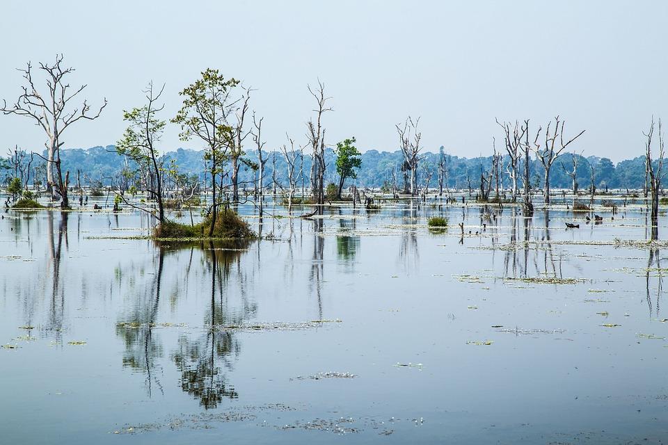 Waters, Reflection, Nature, Lake, River
