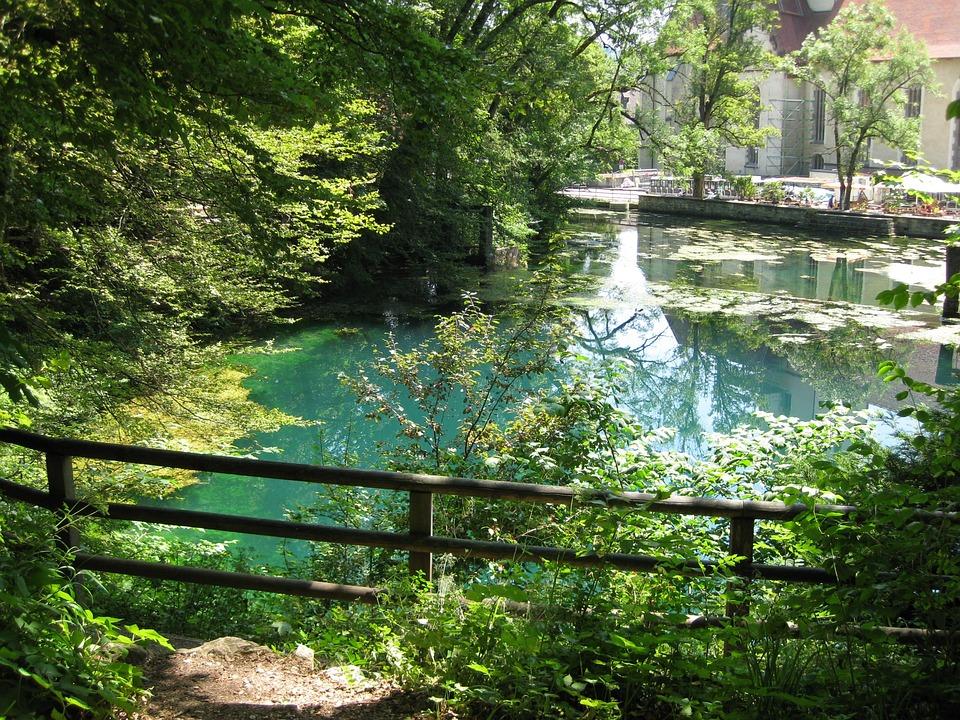 Blue Pot, Water, Blue, Lake, Summer, Wood, Blaubeuren