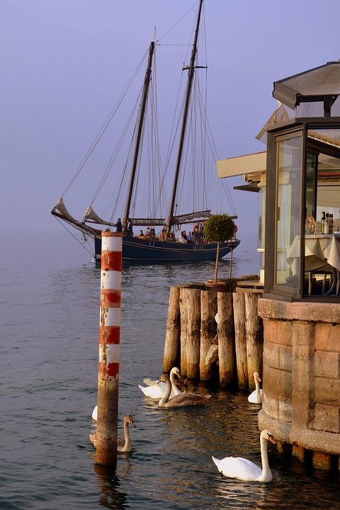 Sailing Ship, Mooring, Lake, Water, Swan