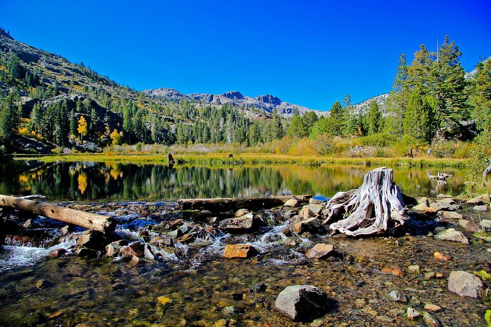 Lake Tahoe, Blue Sky, Blue, Tahoe, Water, Shore