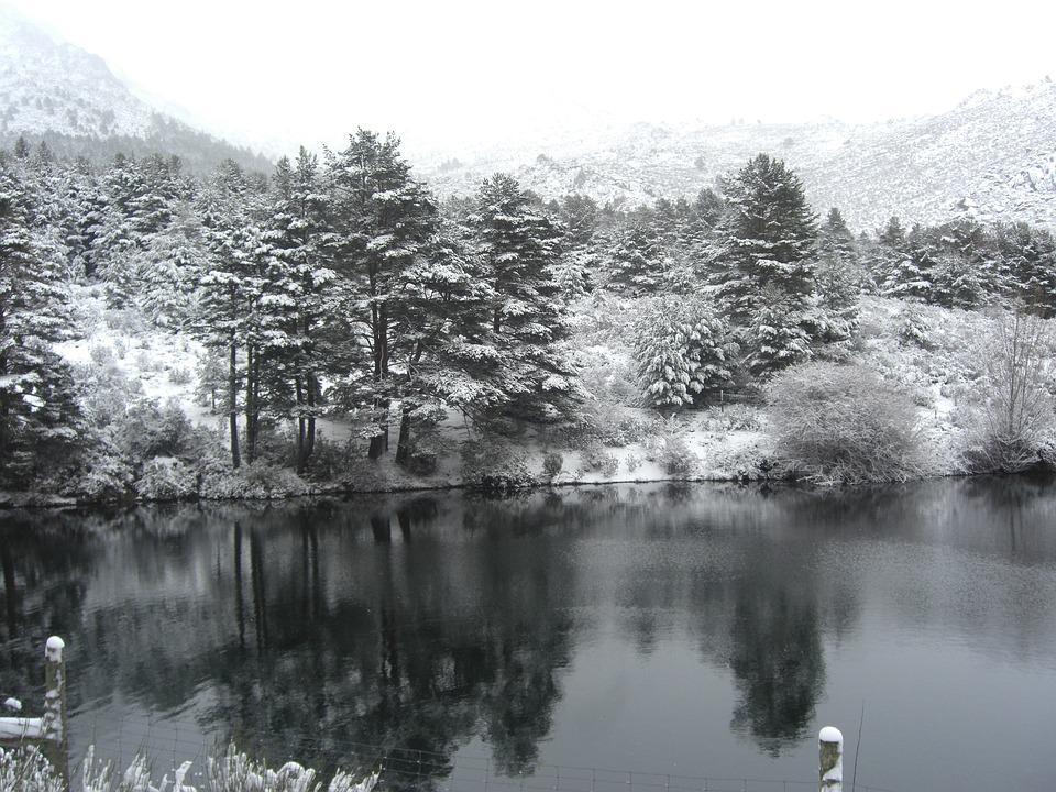 Snow, Winter, Lake, Spain, Cold, Nature, Tree