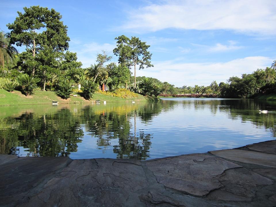 Inhotim, Lake, Minas, Brumadinho, Trees, Sky