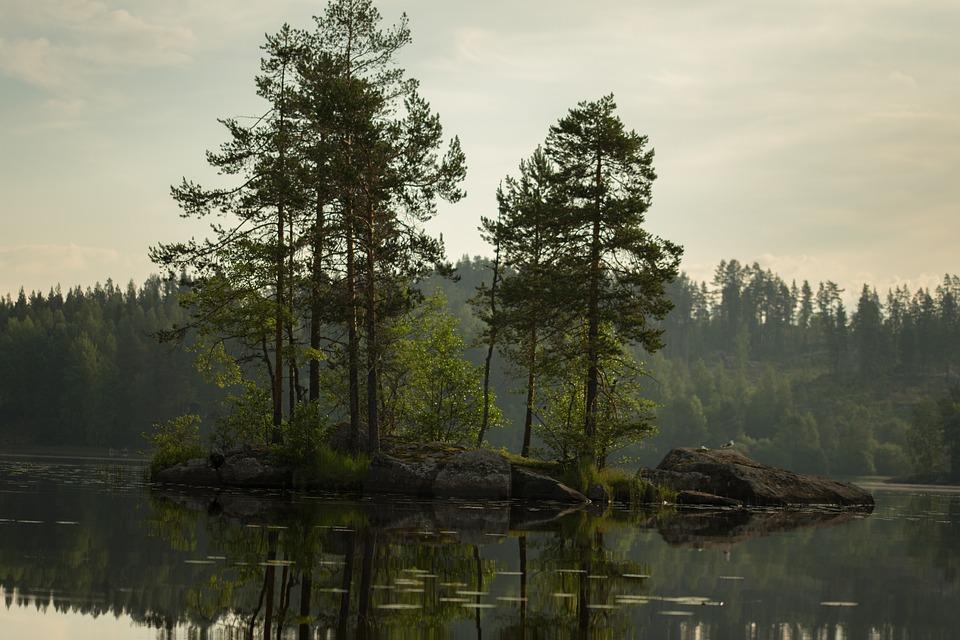 Island, Water, Finnish, Beach, Lake In Finland, Lake