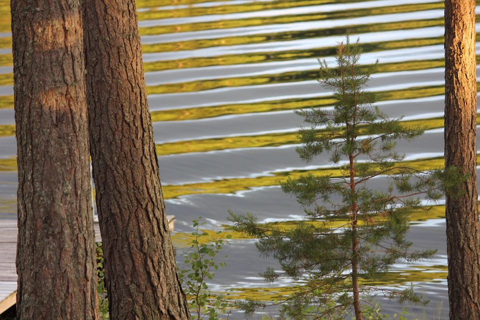 Lake, Saimaa, Waves, Daybreak