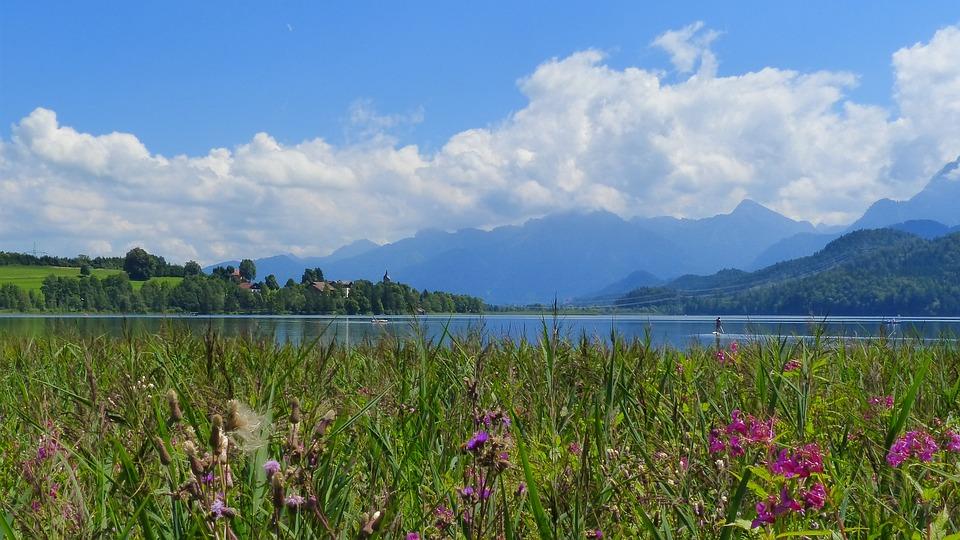 Lake Weissensee, Lake, Waters, Balsam, Reed, Sky