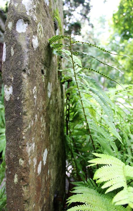 Gate Post, Stone, Lakeland Stone, Fern, Post