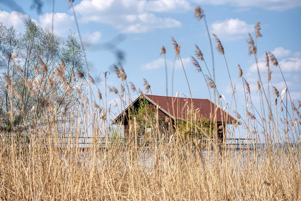 Lakeside, Reed, Hut, Timber Construction, Piles