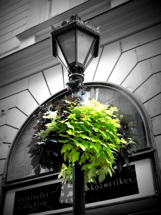 Green, Lamp, Budapest