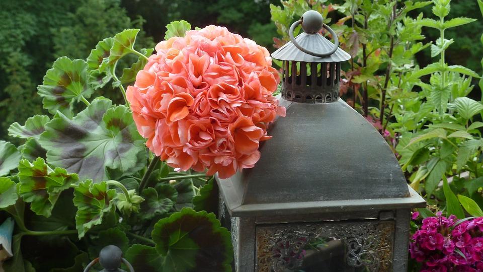 Balcony, Geranium, Flowers, Windlight, Lanterns, Lamps
