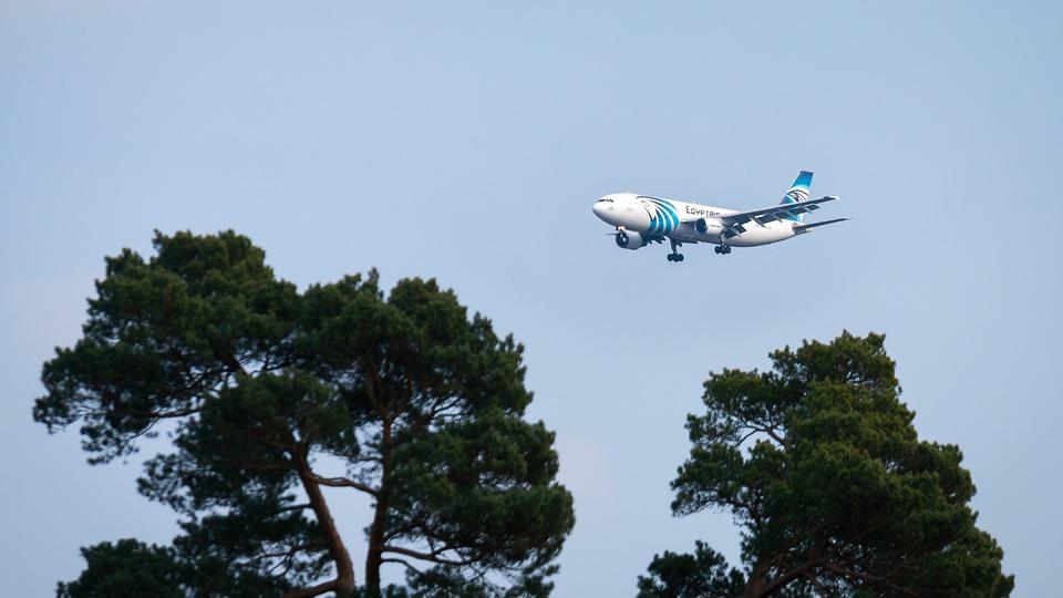 Aircraft, Land, Landing, Vacations, Travel