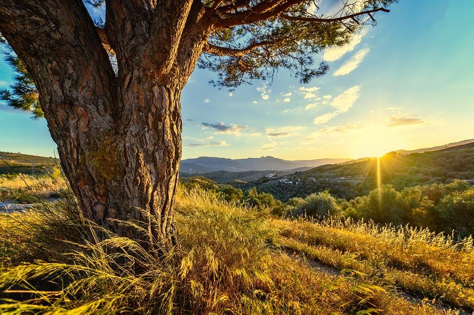 Sunset, Landscape, Romantic, Lighting, Atmosphere