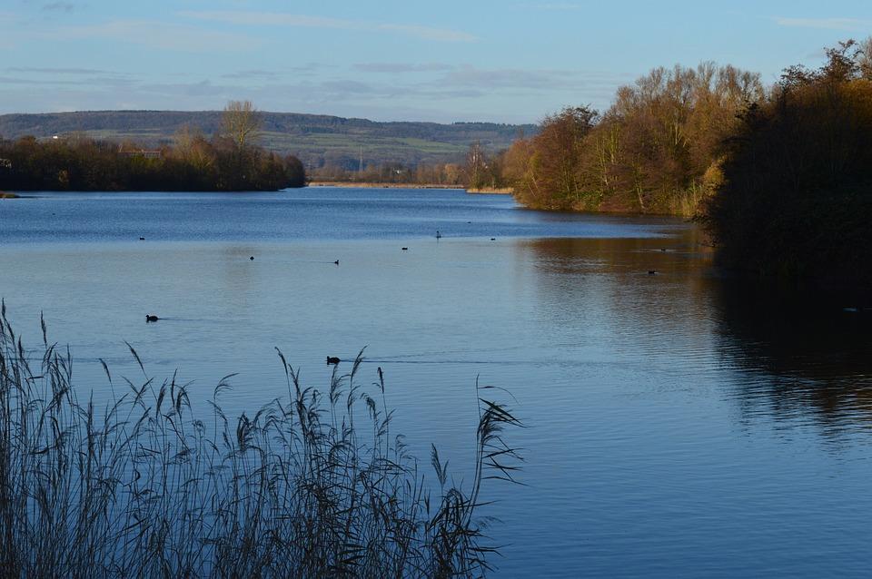 Landscape, Saarland, Lake, Autumn