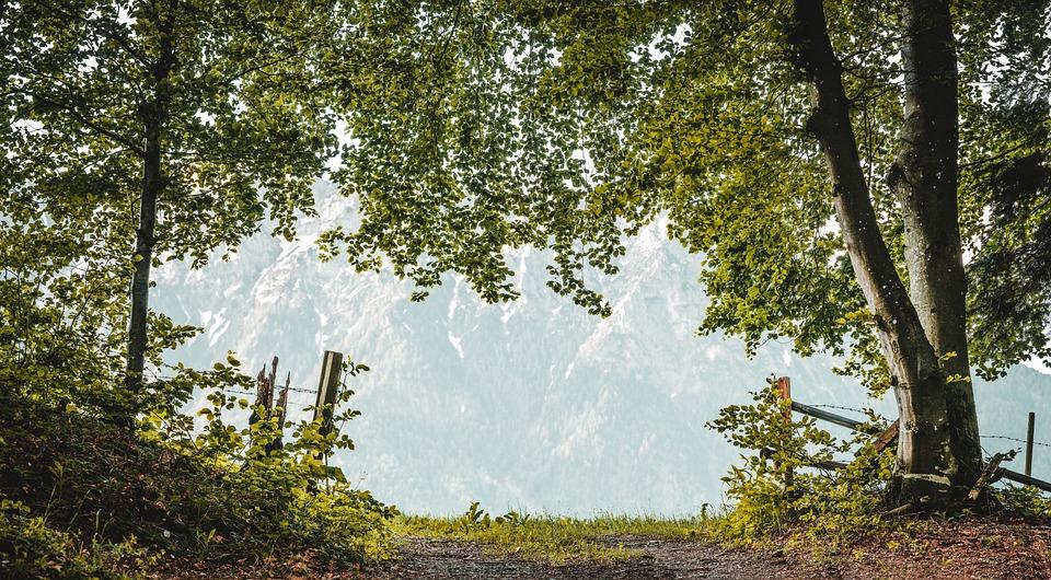 Away, Alpine, Nature, Mountains, Landscape, Trail