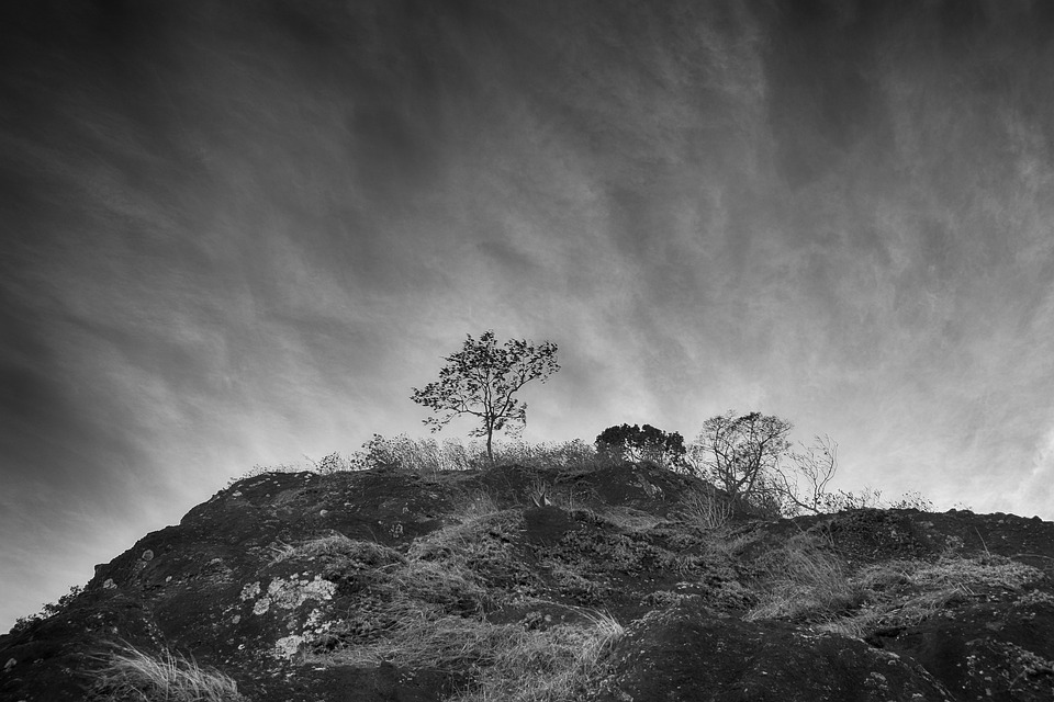 Surrealism, Black And White, Landscape, White, Black