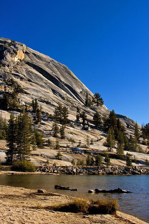 Yosemite, National Park, California, Usa, Landscape