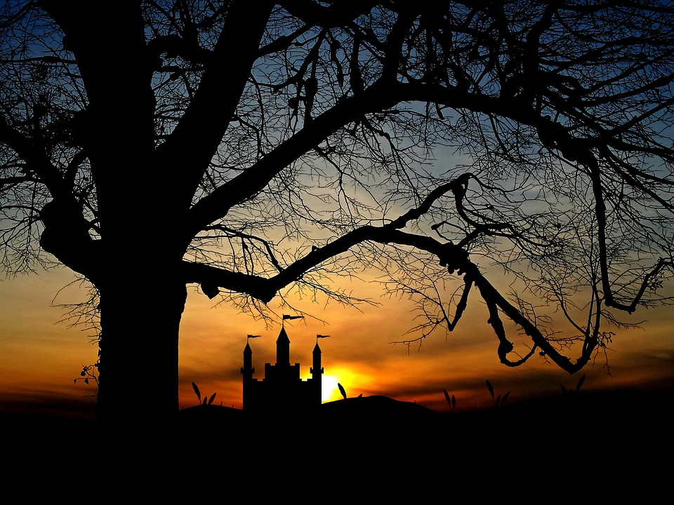 Tree, Castle, Sunset, Landscape, Sky, Fortress