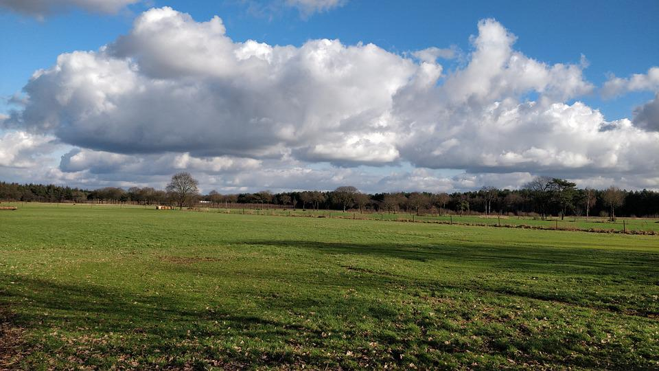 Landscape, Clouds, Sunny