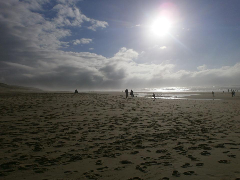 Beach, Windy, Landscape, Coast