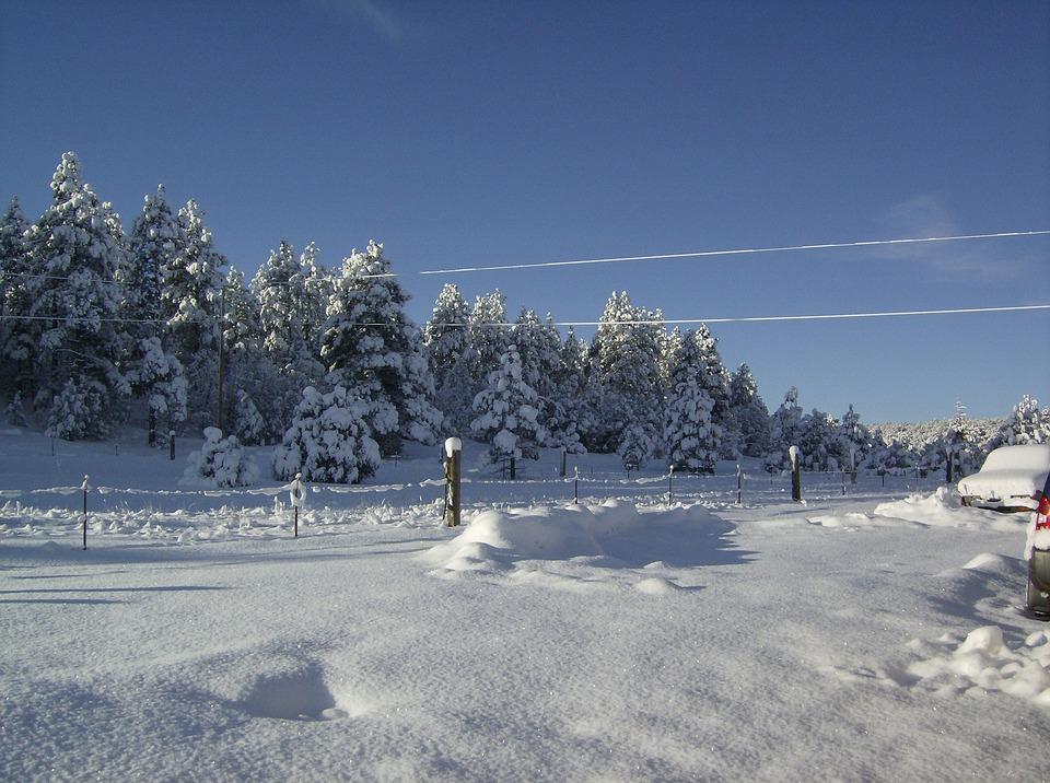 Snow, Cold, Winter, Landscape, Nature, White
