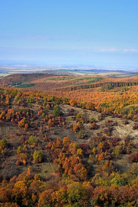 Autumn Landscape, Landscape, Color, Autumn, Nature