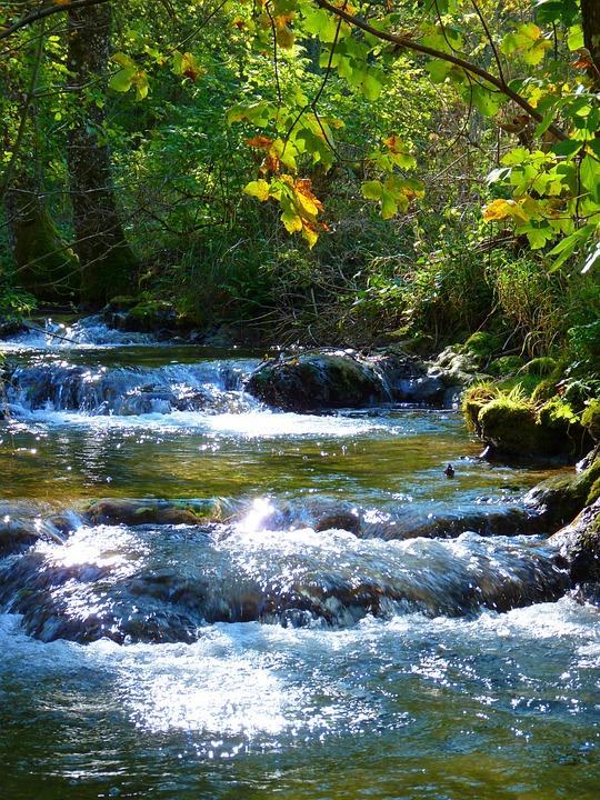 Bach, Creek, River, Idyll, Water, Nature, Landscape