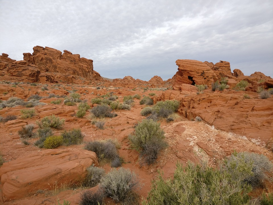 Desert, Rock, Sandstone, Landscape, Dry, Valley Of Fire