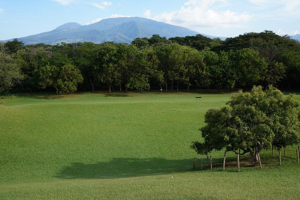 Landscape, El Salvador, San Andrés, Archeology, Trees