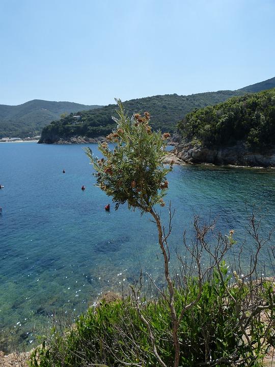 Elba, Hiking, Landscape