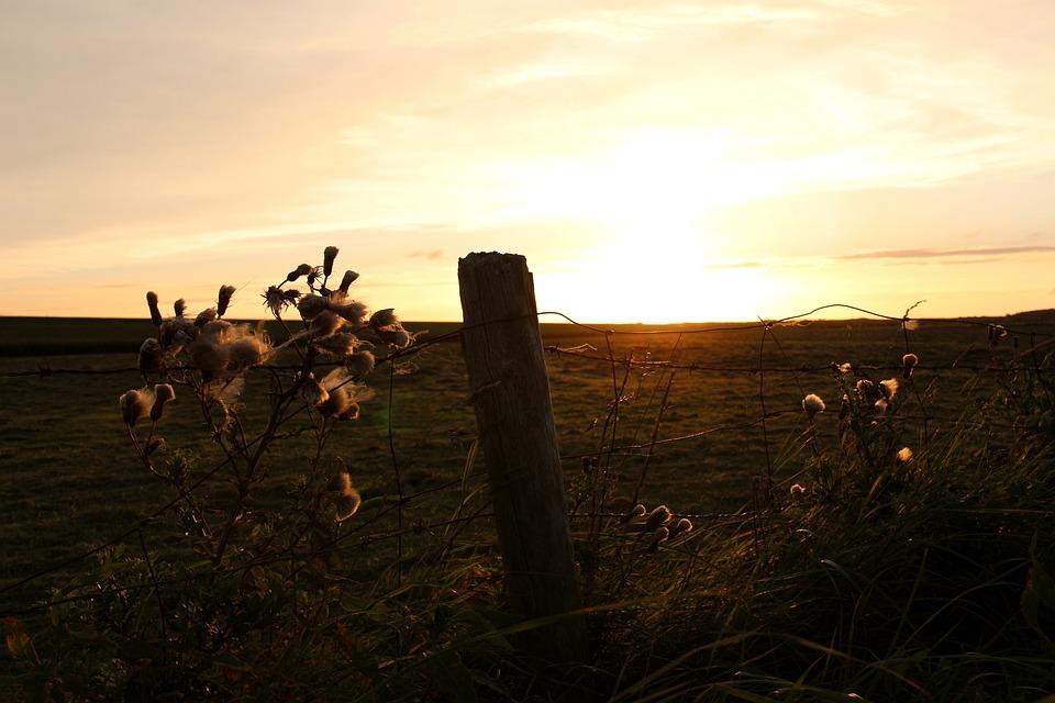 Sunset, Mood, Sky, Landscape, Evening Sky