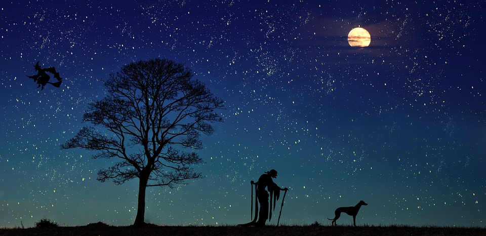 The Witch, Dog, Moon, Tree, Landscape, Fairy Tales