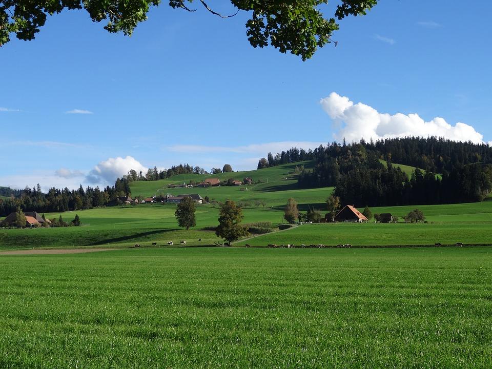 Landscape, Emmental, Farm
