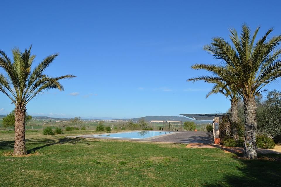 Mallorca, Field, Farm, Landscape