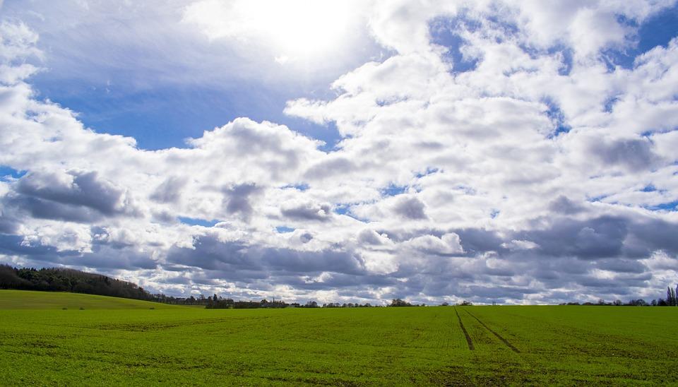 Sky, Grass, Field, Landscape, Cloud, Wind, Nature