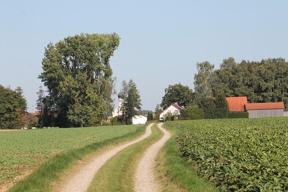 Country Life, Land, Landscape, Rural, Lane, Field, Rest