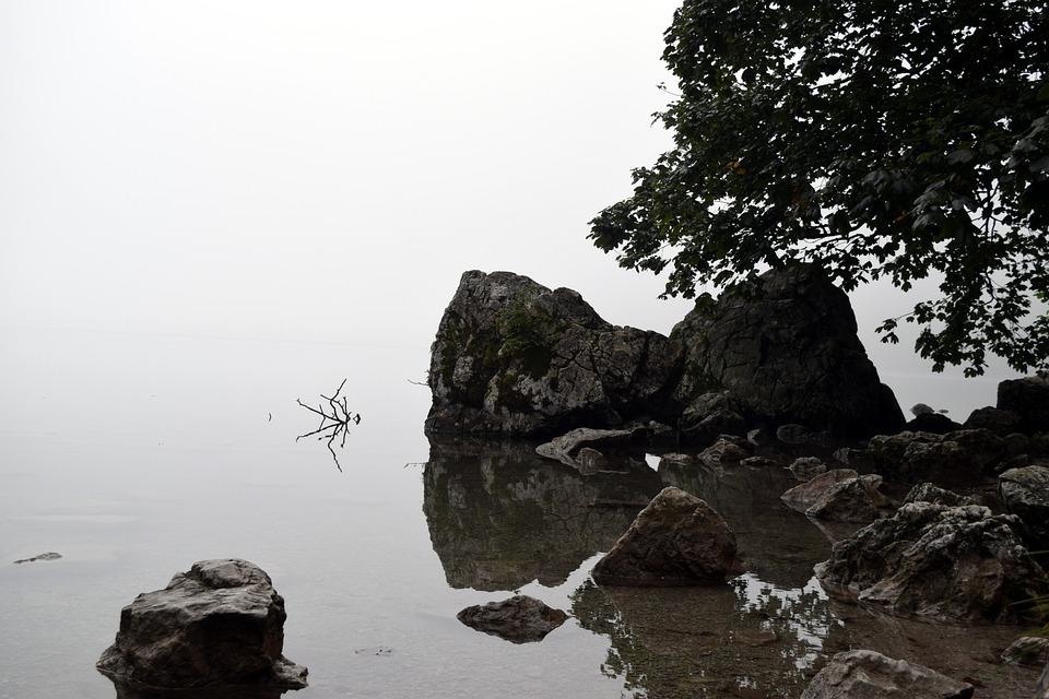 Water, Fog, Lake, Stones, Trees, Landscape, Nature