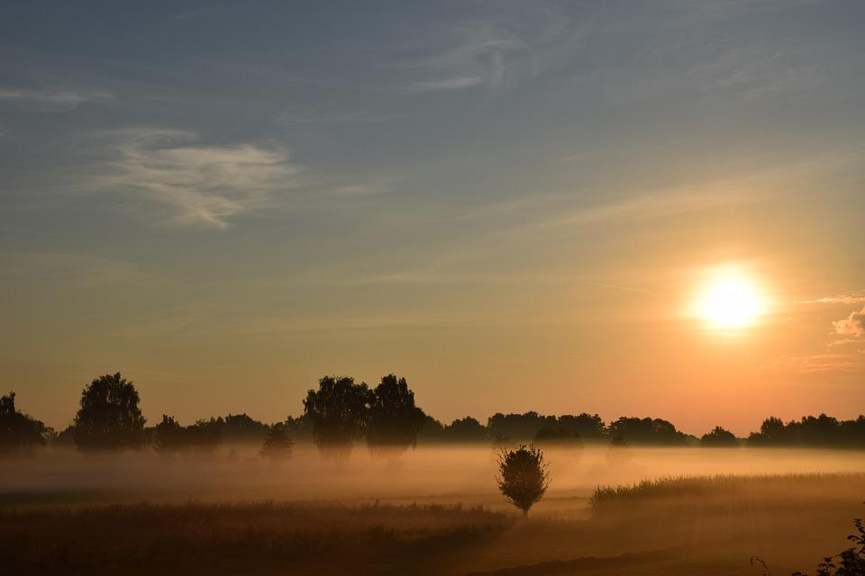 Sunrise, Morning Mist, Haze, Sun, Fog, Trees, Landscape