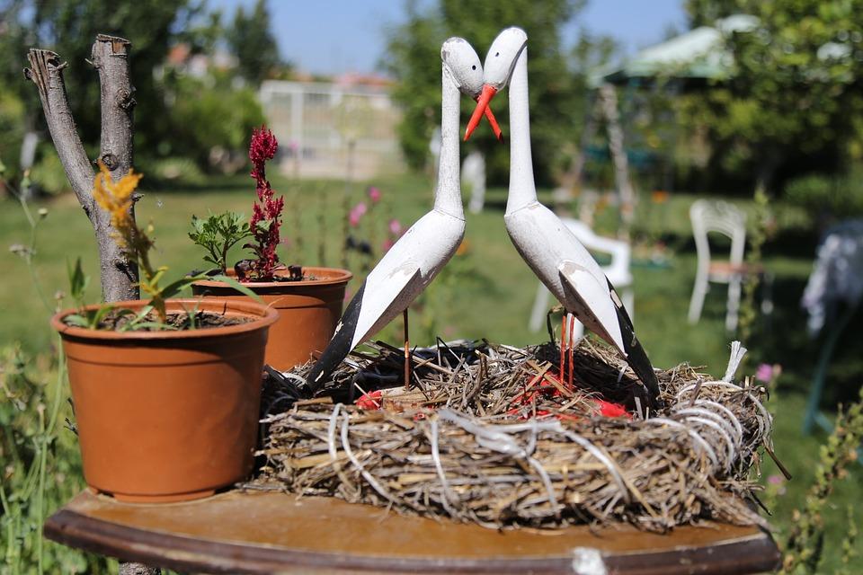 Eskisehir Turkey, Landscape, Garden