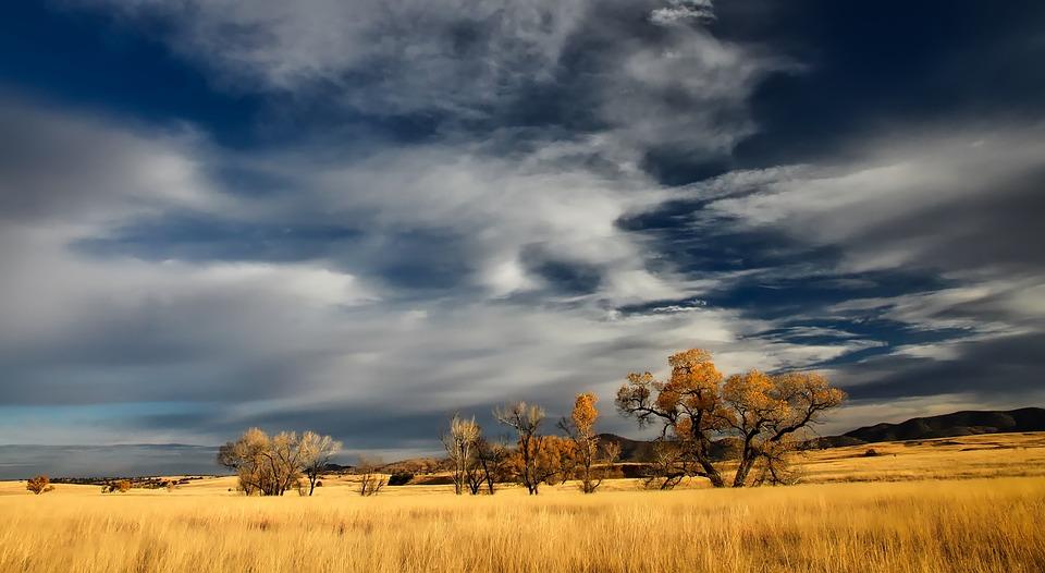 Patagonia, Landscape, Valley, Grassland, Fall, Autumn
