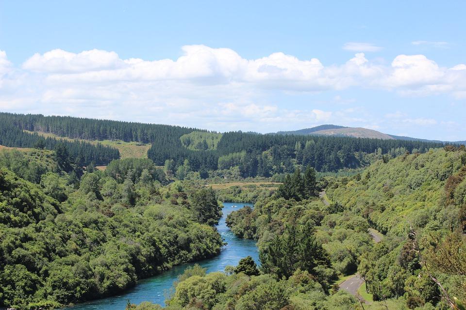 River, New Zealand, Green, Landscape, Tourism, Travel
