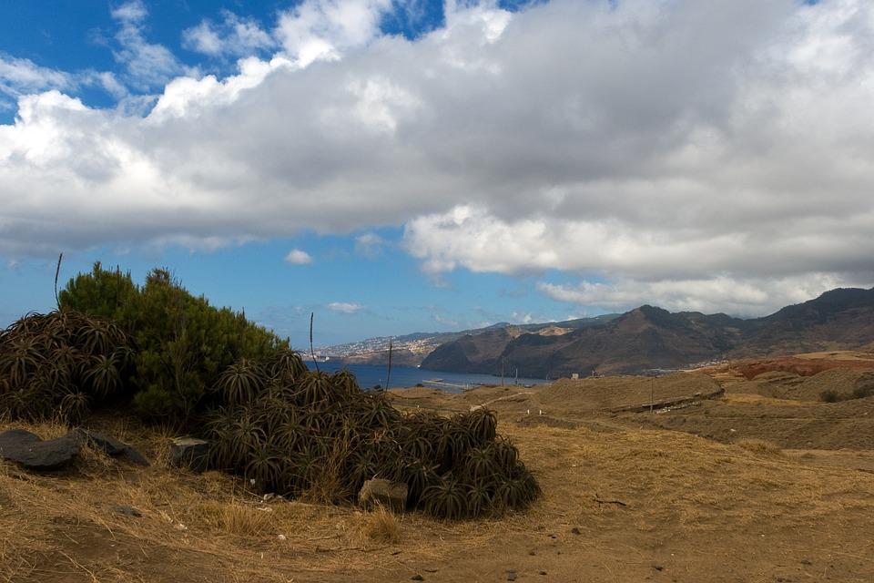 Madeira, Landscape, Highlands, Outlook, Agave