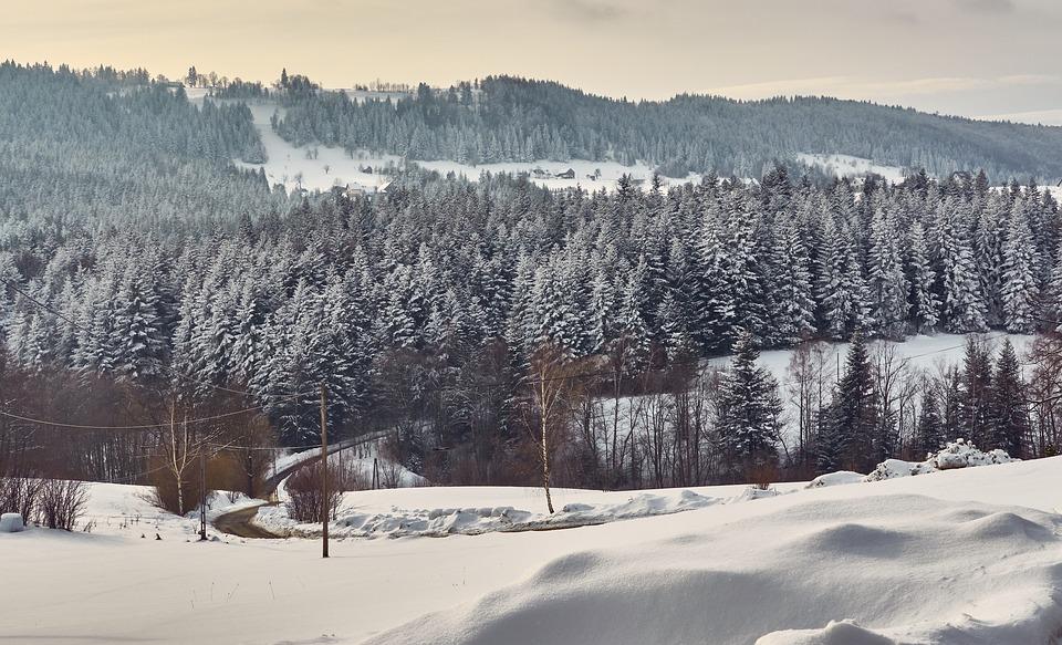 Poland, Island Beskids, Landscape, Winter