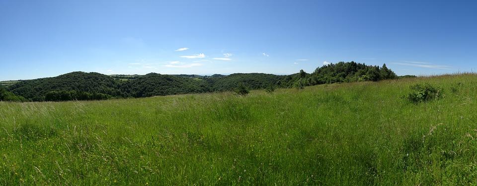 Jerzmanowice, Poland, Landscape, Nature, Panorama, Tree