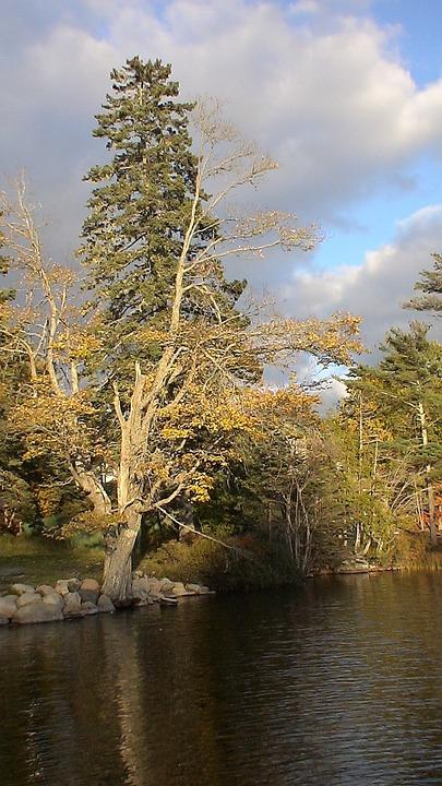 Lake, Maine, Bar Island, Reflections, Landscape, Scenic