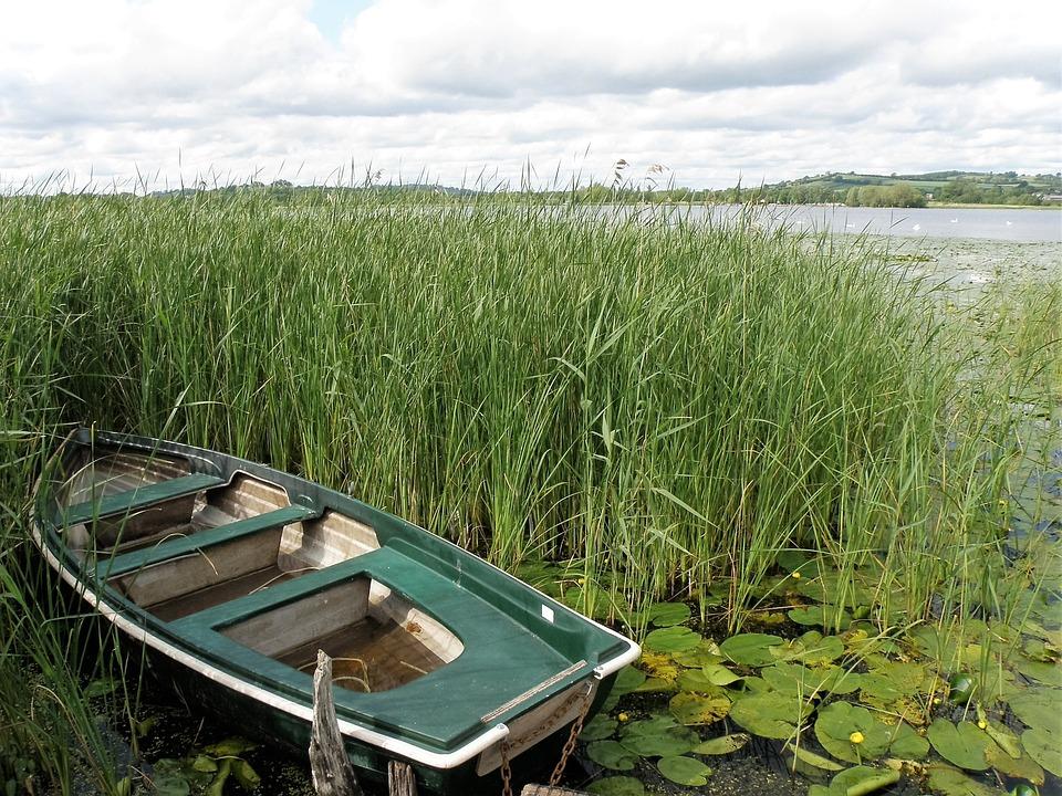 Boat, Lake, Landscape, Nature, Reeds
