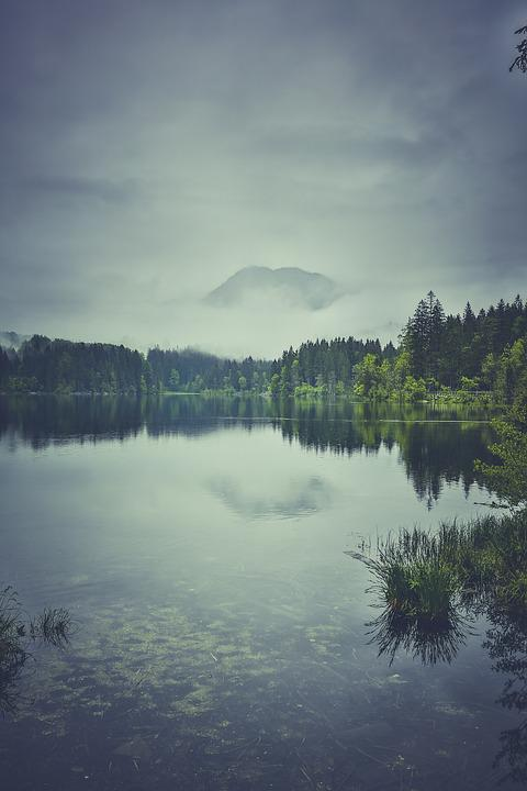 Fog, Lake, Landscape, Mountain, Nature, Trees